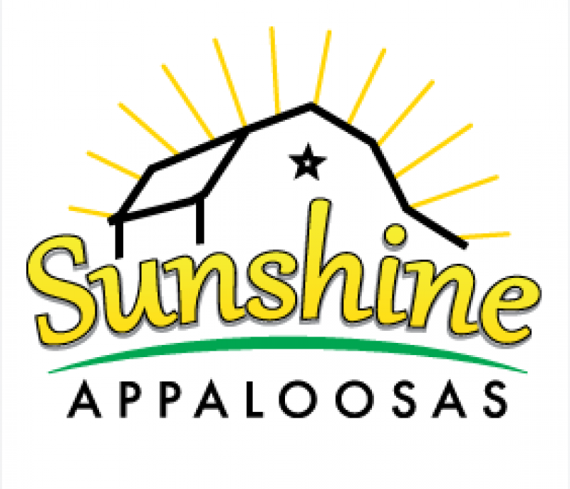 Sunshine Appaloosas