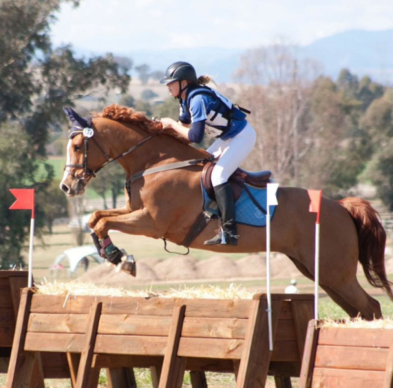 Johnson Eventing